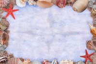 Frame of shells