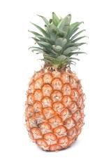 Pineapple  (Ananas sativus)