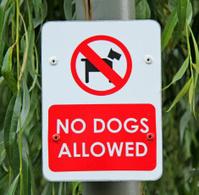 Dog Sign.