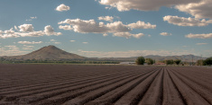 Furrows in Cultivated Farm Field