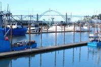 Harbor, Boats, & Bridge