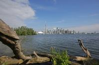 Toronto City Skyline and Lake Ontario