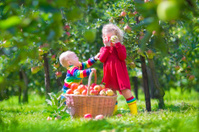Kids with apple basket