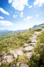 Norway, mountain trail.