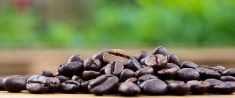 Coffee on wooden background Fresh coffee beans