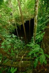 Cenote into the Earth