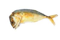 Mackerel fried