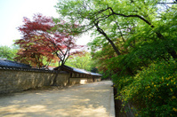 The royal house inside the secret garden of Changdeokgung Palace