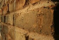 Brick wall 1