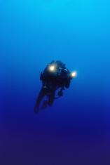 video diver