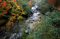 Flowing River in Fall Colors, Cleveland, Ohio