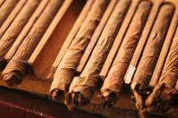 Handmade Cuban cigars drying