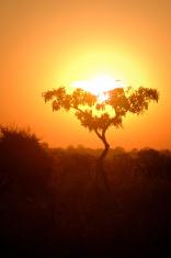 Burning Sundown in Zambia Africa