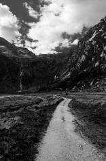 Nature Hiking - Black and white
