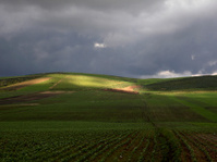 Beautiful landscape in Ifrane