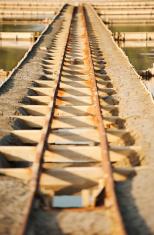 Track in Salt Pans