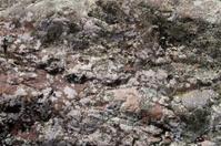 Stone and lichen