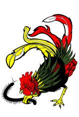 Rooster Versus Centipede
