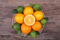 Mix of fresh citrus fruits on  wood