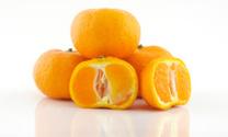 Citrus close up