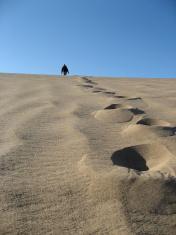 Walking Alone in the Gobi Desert