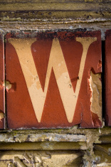 Alphabet Series Letter W