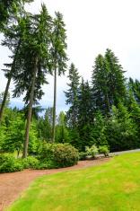 Beautiful landscape design. Washington state