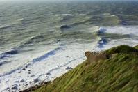 grass on the coast