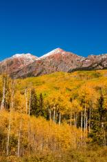 Fall Color in Crested Butte Colorado
