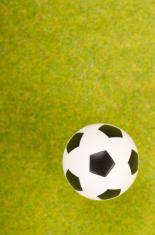 Soccer ball on the green grass.