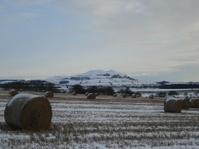 Largo Law in Winter