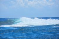 reef wave