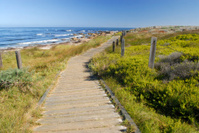 Boardwalk at Spanish Bay