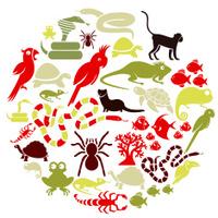 Exotic Pets Icon Set