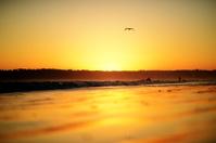 sunset san diego beach