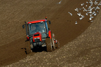 Plowing in fall