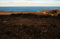 Oceanfront Volcanic Landscape