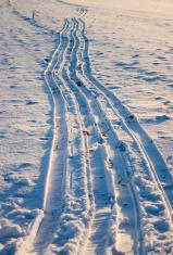 Cross-Country Ski Path