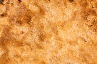Rising Salt Texture