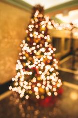 christmas tree bokeh of lights