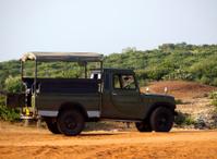 Jeep for tourists safari