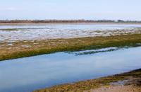Grado lagoon