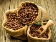 Coffee beans in jute bags