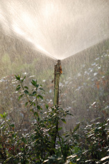 Cone luminous fountain of sprinkler