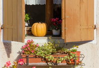 Country House Window