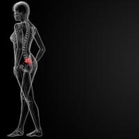 3d render medical illustration of the sacrum bone