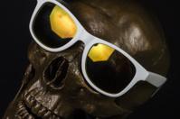 human skull model with sunglasses