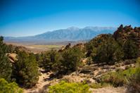 California Wilderness