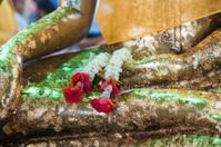 Closeup garland in Buddha hand