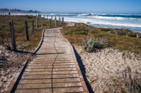 Beach Boarwalk